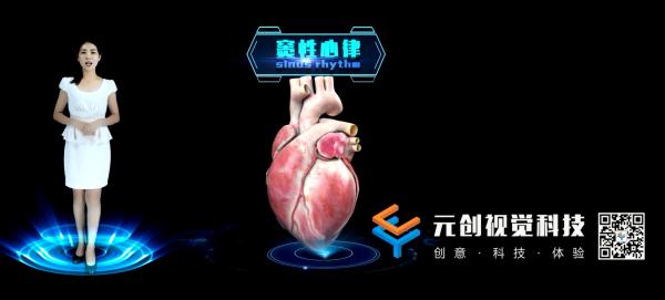 中科院心脏虚拟讲解员